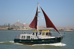 Click image for larger version  Name:coot with sails.JPG Views:39 Size:68.3 KB ID:219432