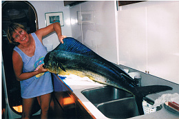 Click image for larger version  Name:PatMahi galley001.jpg Views:90 Size:426.4 KB ID:220148