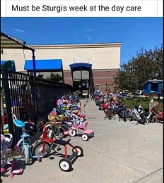 Click image for larger version  Name:sturgis.jpg Views:241 Size:117.9 KB ID:222640