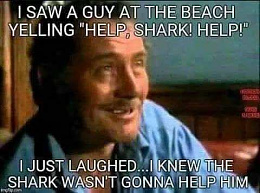 Click image for larger version  Name:shark.jpg Views:138 Size:20.5 KB ID:225179