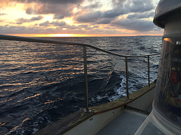 Click image for larger version  Name:Oct 2018 Trip to Ensenada3.jpg Views:22 Size:433.1 KB ID:228745