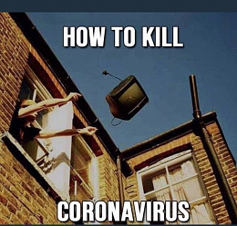 Click image for larger version  Name:howtokillcovid.jpeg Views:71 Size:113.6 KB ID:231263