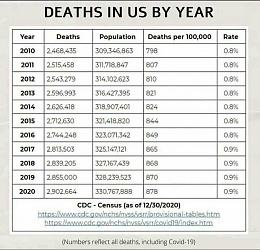Click image for larger version  Name:USDeaths.jpg Views:97 Size:83.6 KB ID:231271