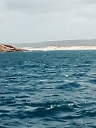Click image for larger version  Name:Gabo Island to Green Cape, 014.jpg Views:148 Size:348.2 KB ID:235812