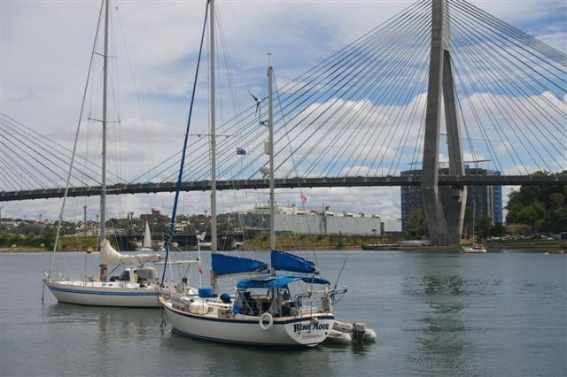 Click image for larger version  Name:Blackwattle Bay - Blue Moon.JPG Views:158 Size:57.5 KB ID:2397