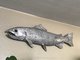 Click image for larger version  Name:Fish.jpg Views:18 Size:95.6 KB ID:242535