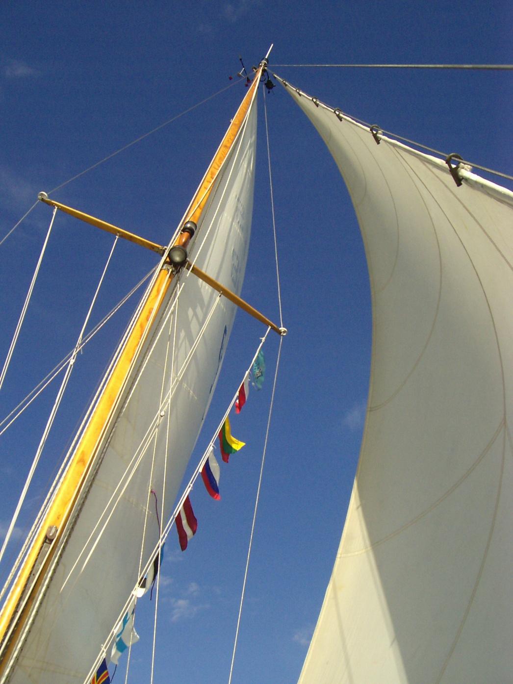 Click image for larger version  Name:Gastlandflaggen.jpg Views:81 Size:414.3 KB ID:24308