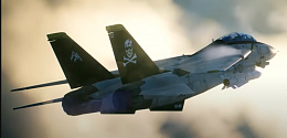 Click image for larger version  Name:f-14.jpg Views:22 Size:180.4 KB ID:245350