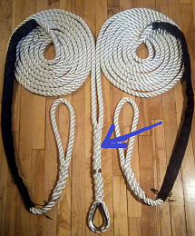 Click image for larger version  Name:3 Strand Bridle.jpg Views:72 Size:463.2 KB ID:245926