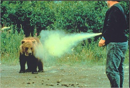 Click image for larger version  Name:bear-attack-bear-spray.jpg Views:95 Size:62.1 KB ID:31080
