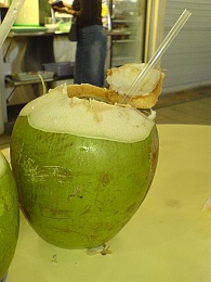 Click image for larger version  Name:450px-Coconut_drink.jpg Views:97 Size:37.5 KB ID:31841