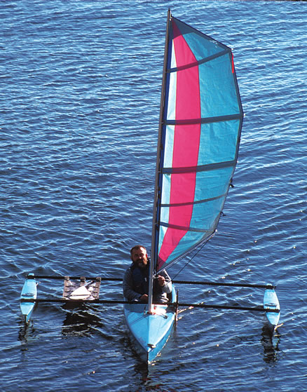 Click image for larger version  Name:cormorant_sailing-13x.jpg Views:76 Size:103.1 KB ID:31983
