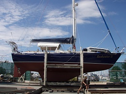 Click image for larger version  Name:Rushcutter 2011 025.jpg Views:211 Size:416.8 KB ID:32566