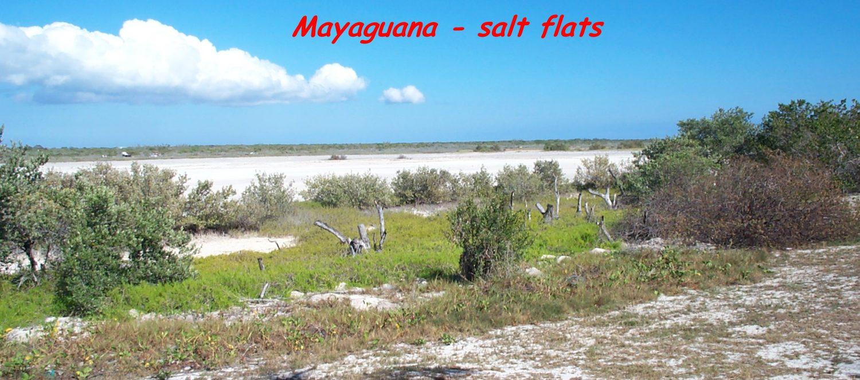 Click image for larger version  Name:040308Mayaguana2.jpg Views:129 Size:202.7 KB ID:32569