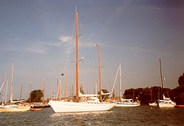 Click image for larger version  Name:Williewel voor anker in Hoorn.jpg Views:199 Size:36.9 KB ID:35371