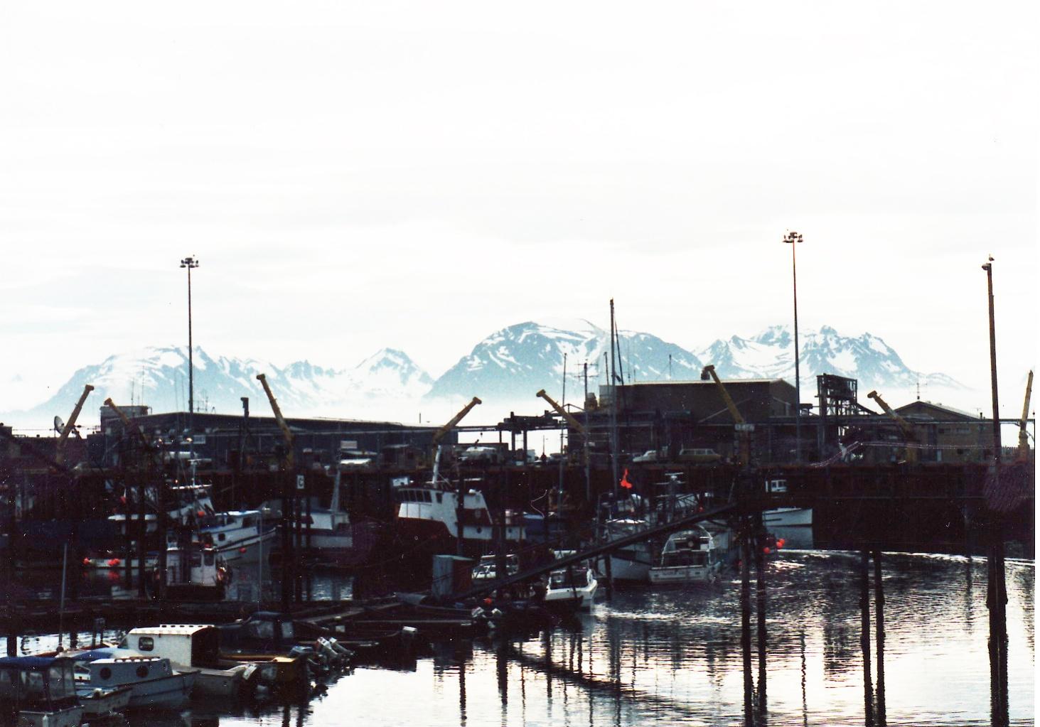 Click image for larger version  Name:Homer_marina.jpg Views:62 Size:362.6 KB ID:35474