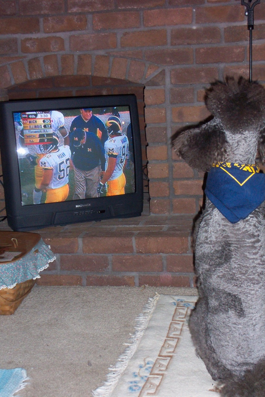 Click image for larger version  Name:GO BLUE 3.jpg Views:86 Size:425.4 KB ID:37468