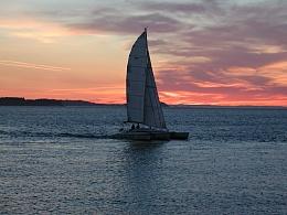 Click image for larger version  Name:Steve boat 001.jpg Views:98 Size:420.9 KB ID:40064