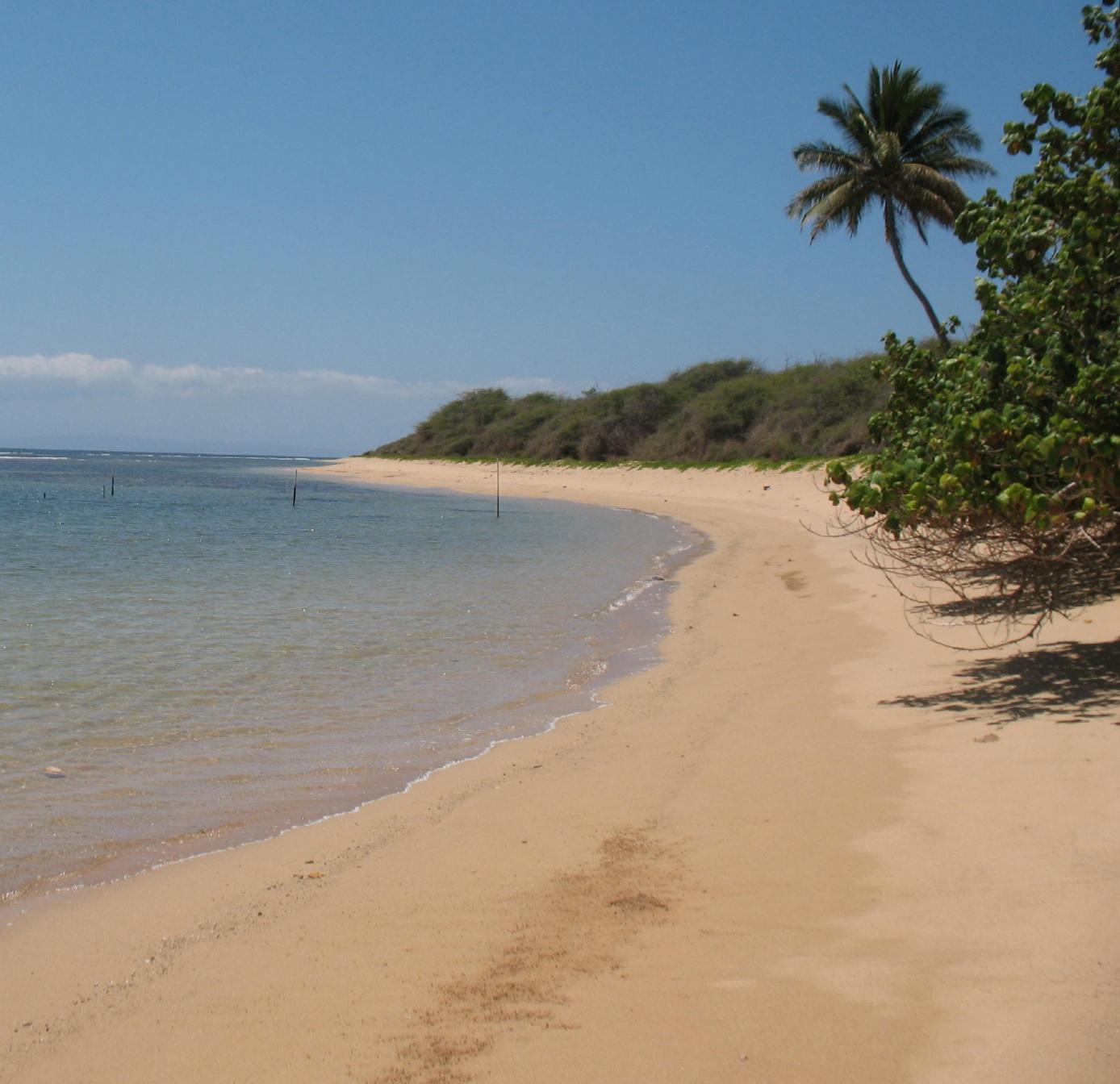 Click image for larger version  Name:Lanai Club Beach.jpg Views:179 Size:424.2 KB ID:41534