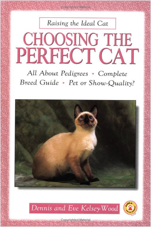 Click image for larger version  Name:Choosing the perfect cat.jpg Views:64 Size:75.1 KB ID:43696