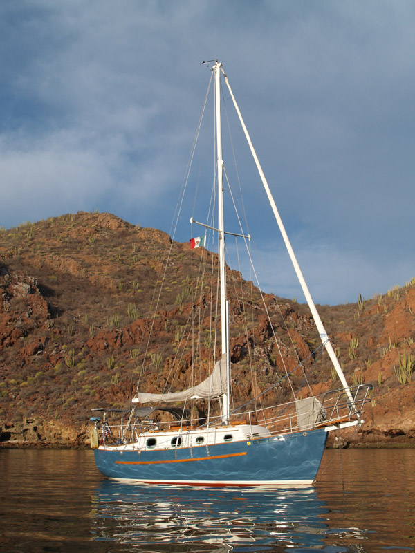 Click image for larger version  Name:In Sea of Cortez 600x800.jpg Views:86 Size:163.3 KB ID:45740