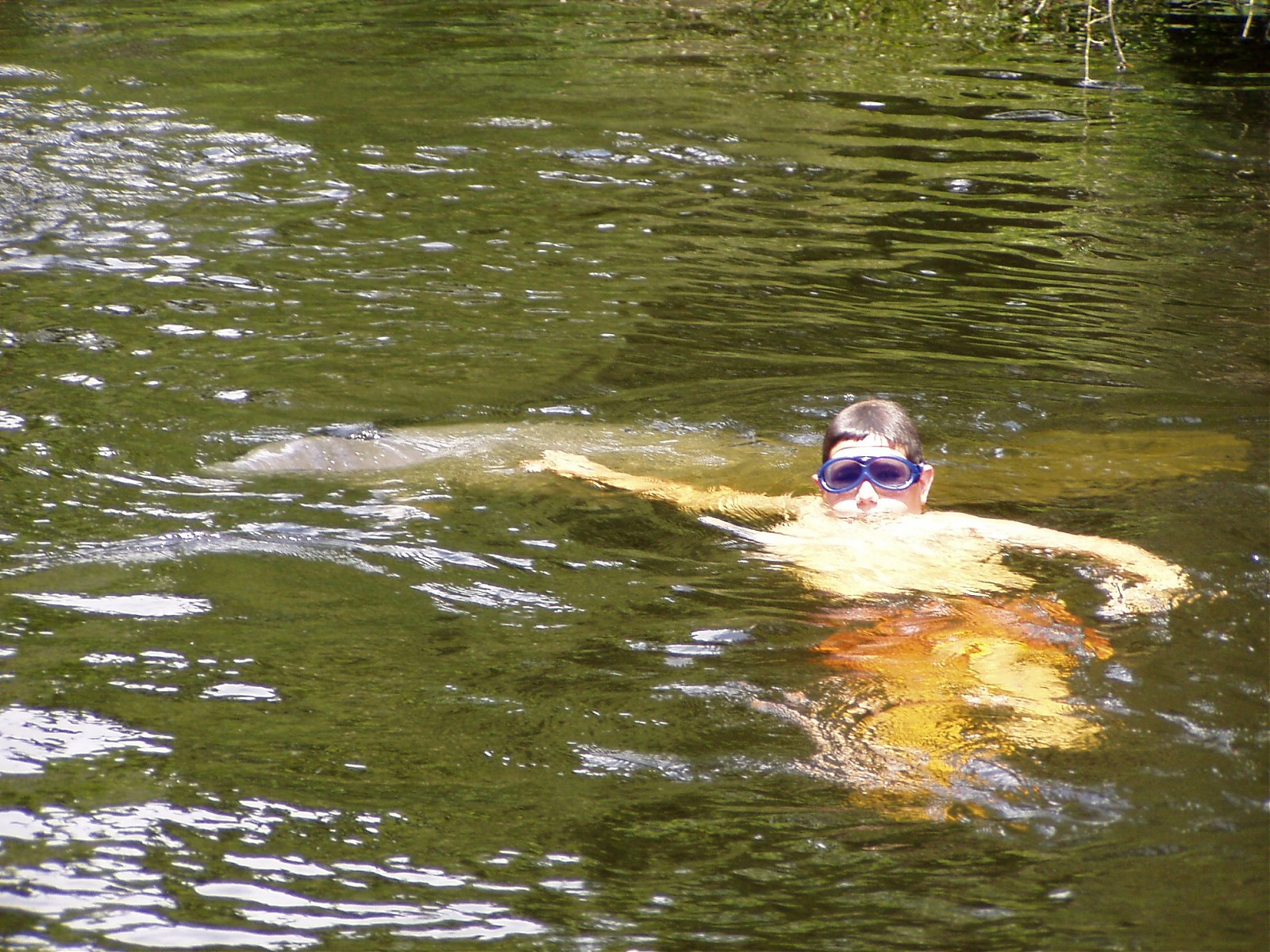 Click image for larger version  Name:WW Manatee and Justin003.jpg Views:220 Size:562.2 KB ID:4634