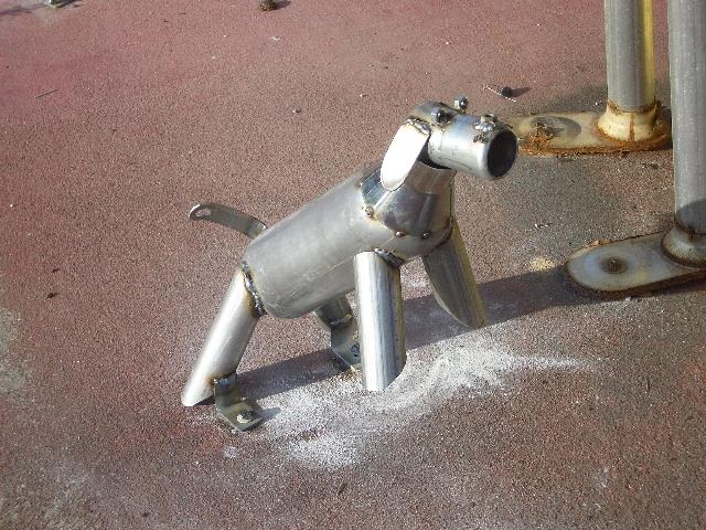 Click image for larger version  Name:Mflr dog.JPG Views:128 Size:377.5 KB ID:4679