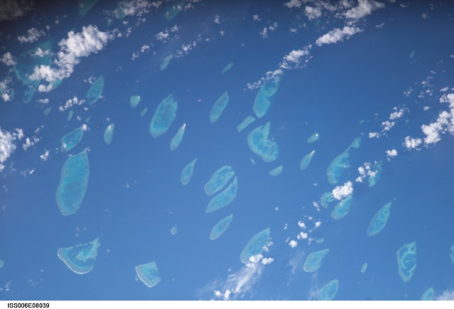 Click image for larger version  Name:swains reef.jpg Views:116 Size:44.9 KB ID:514