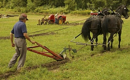 Click image for larger version  Name:farmers plow.jpg Views:124 Size:152.8 KB ID:51853