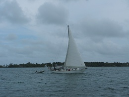 Click image for larger version  Name:Abaco 2 - 5.25.10 009.jpg Views:198 Size:375.4 KB ID:57940