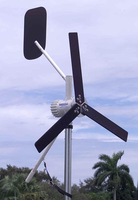 Click image for larger version  Name:Windbugger.jpg Views:321 Size:82.1 KB ID:5998