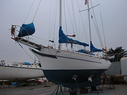 Click image for larger version  Name:Petrel haulot 2008 067.jpg Views:242 Size:462.4 KB ID:6316