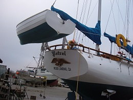 Click image for larger version  Name:Petrel haulot 2008 070.jpg Views:221 Size:463.8 KB ID:6317