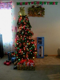 Click image for larger version  Name:xmasstree.jpg Views:171 Size:113.3 KB ID:6405