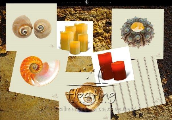 Click image for larger version  Name:She Sells Sea Shells Collage.jpg Views:321 Size:53.6 KB ID:64361