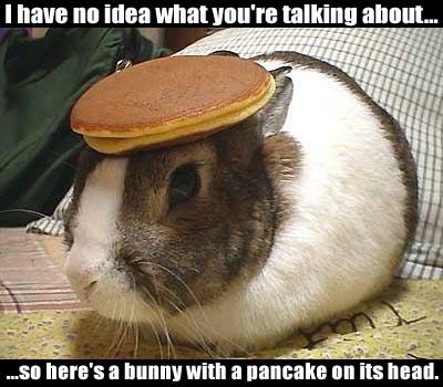Click image for larger version  Name:pancake_bunny.jpg Views:85 Size:47.5 KB ID:65780