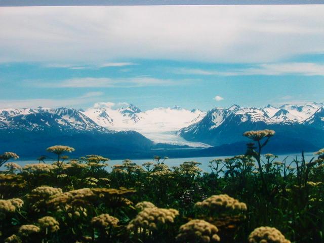 Click image for larger version  Name:valdez.JPG Views:89 Size:81.7 KB ID:6669