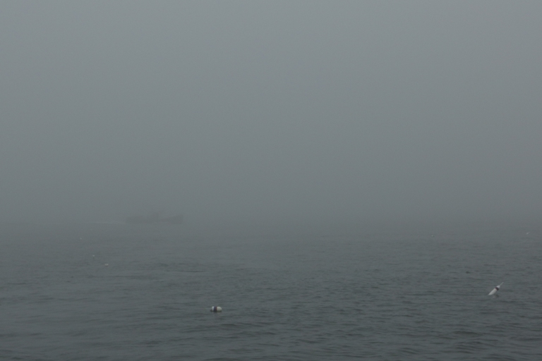 Click image for larger version  Name:This is fog.JPG Views:236 Size:127.1 KB ID:67227