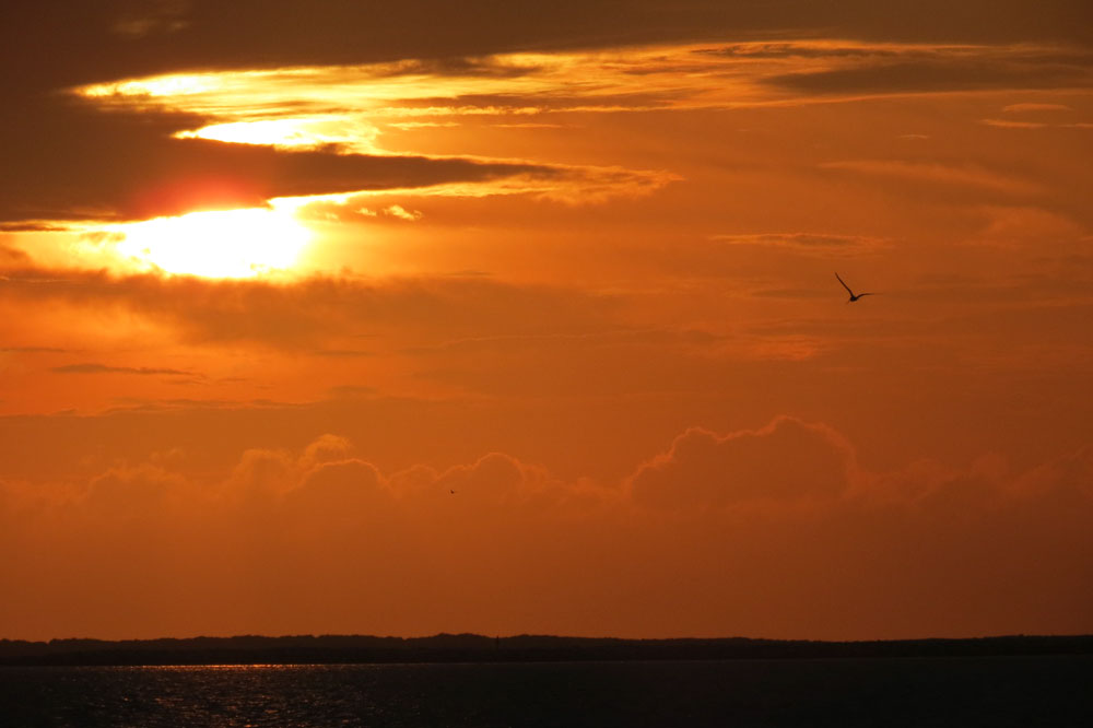 Click image for larger version  Name:Sunset_over_dike.jpg Views:131 Size:52.7 KB ID:68282