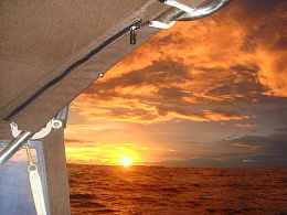 Click image for larger version  Name:pacific 2010 066.jpg Views:125 Size:415.1 KB ID:68288