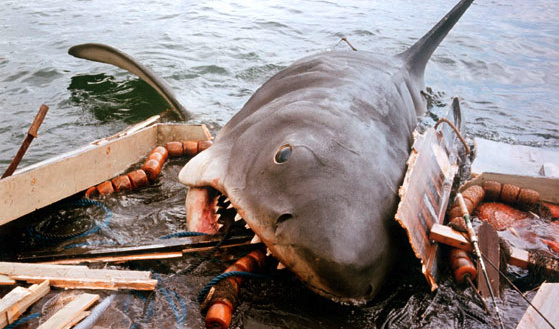 Click image for larger version  Name:jaws-shark-eating-boat.jpg Views:1919 Size:113.3 KB ID:69787