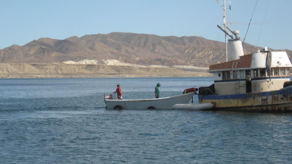 Click image for larger version  Name:Ensenada to Turtle Bay 029.jpg Views:200 Size:162.7 KB ID:70121