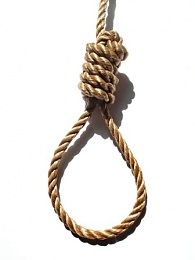 Click image for larger version  Name:Noose.jpg Views:333 Size:18.1 KB ID:71837