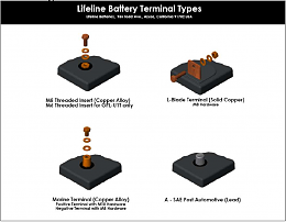 Click image for larger version  Name:Lifeline Battery Terminals.png Views:205 Size:177.5 KB ID:7412