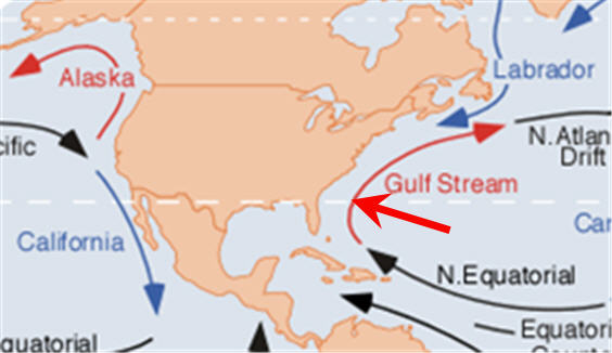 Click image for larger version  Name:Gulf stream.jpg Views:92 Size:30.2 KB ID:74193