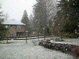 Click image for larger version  Name:snow3_15_09a.JPG Views:141 Size:76.3 KB ID:7433