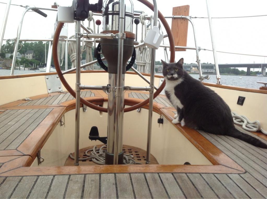 Click image for larger version  Name:ImageUploadedByCruisers Sailing Forum1391867649.955745.jpg Views:143 Size:241.8 KB ID:75505