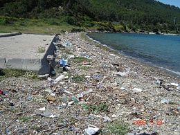 Click image for larger version  Name:rubbish beach.jpg Views:274 Size:131.4 KB ID:7614
