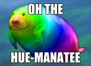 Click image for larger version  Name:oh the hue manatee.jpg Views:110 Size:16.5 KB ID:77091