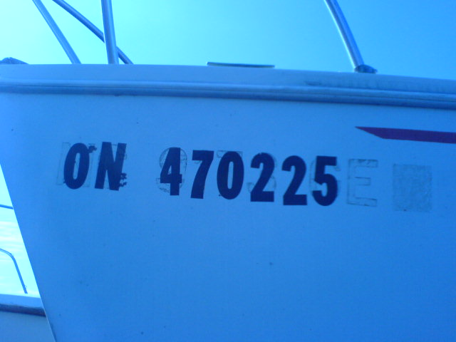 Click image for larger version  Name:BoatDockApr09 003.jpg Views:130 Size:38.4 KB ID:7902